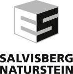 thumb_Logo_Salvisberg_RGB