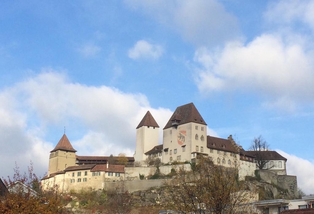 Schloss_Burgdorf_Süden_Daniel_Furter